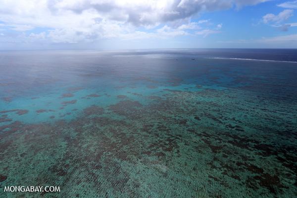 Hastings Reef in Australia [australia_great_barrier_reef_0264]