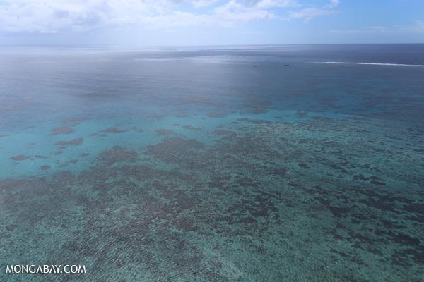 Hastings Reef on the GBR [australia_great_barrier_reef_0265]