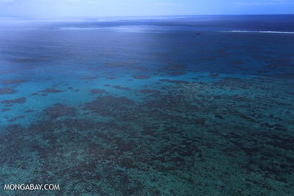 Hastings Reef on the Great Barrier Reef [australia_great_barrier_reef_0266]