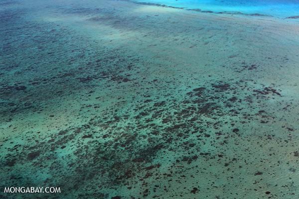 Great Barrier Reef [australia_great_barrier_reef_0314]