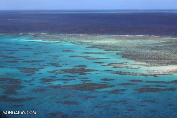 Great Barrier Reef near Cairns [australia_great_barrier_reef_0373]