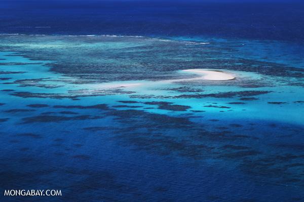 Great Barrier Reef near Cairns [australia_great_barrier_reef_0380]