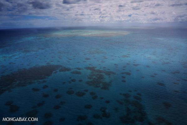 Great Barrier Reef near Cairns [australia_great_barrier_reef_0429]