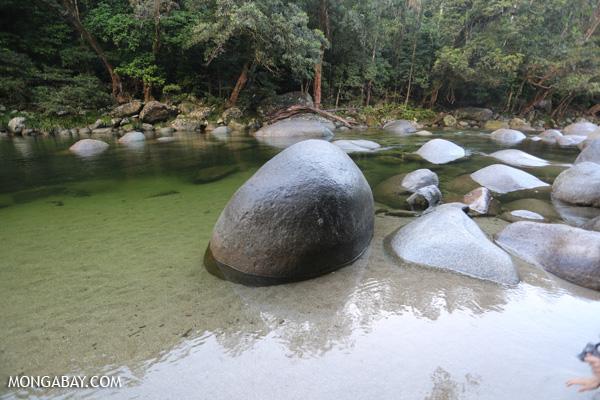 Mossman river [australia_mossman_gorge_410]