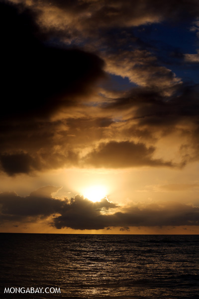 Australian daybreak [australia_road_to_daintree_130]