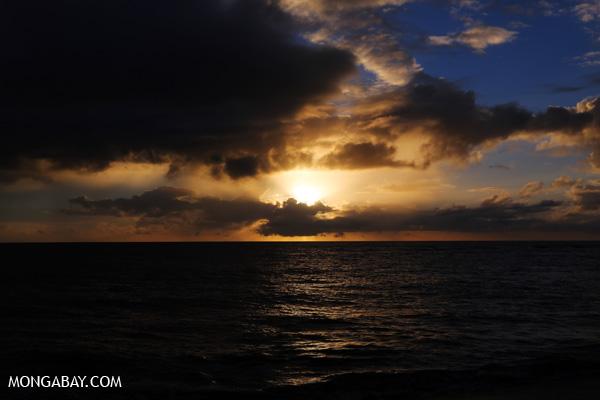 Australian daybreak