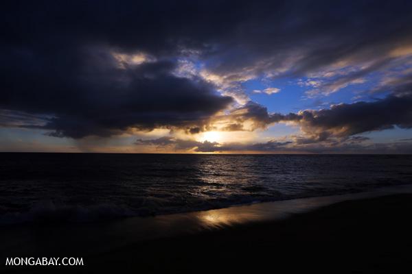 Australian sunrise [australia_road_to_daintree_135]