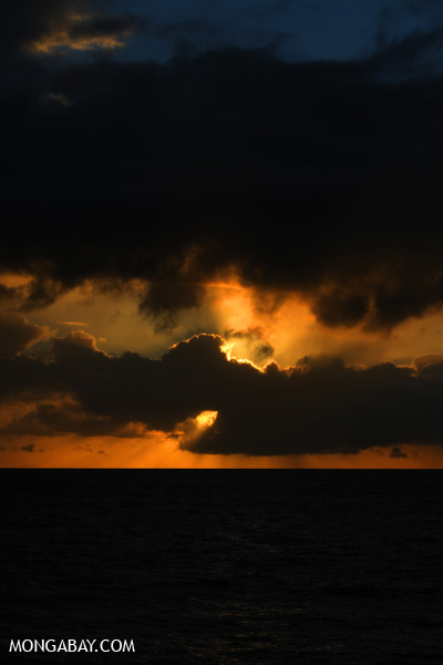 Australian dawn [australia_road_to_daintree_152]