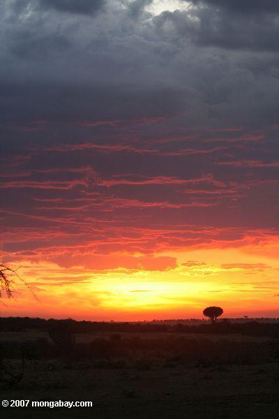 Red Kenyan sunset