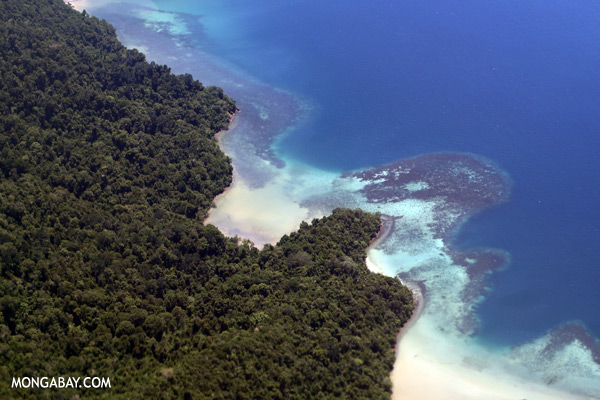 Reef and rainforest in Sabah