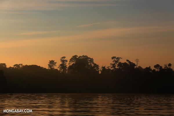 Kinabatangan river at sunrise [sabah_kinabatangan_0200]