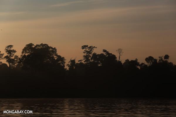 Kinabatangan river at sunrise [sabah_kinabatangan_0203]