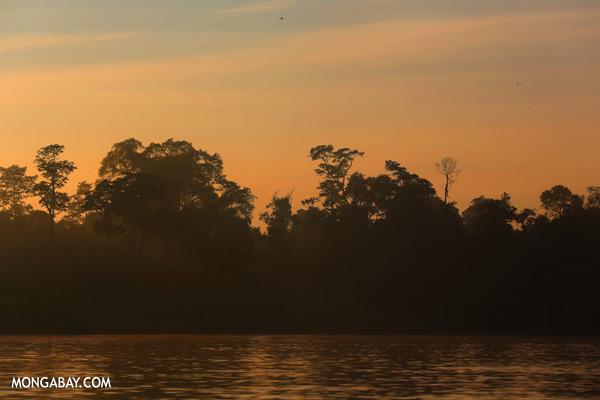 Kinabatangan river at sunrise [sabah_kinabatangan_0204]