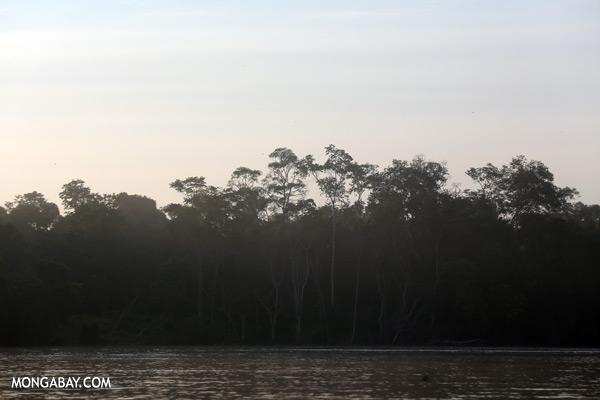 Kinabatangan river at sunrise [sabah_kinabatangan_0212]