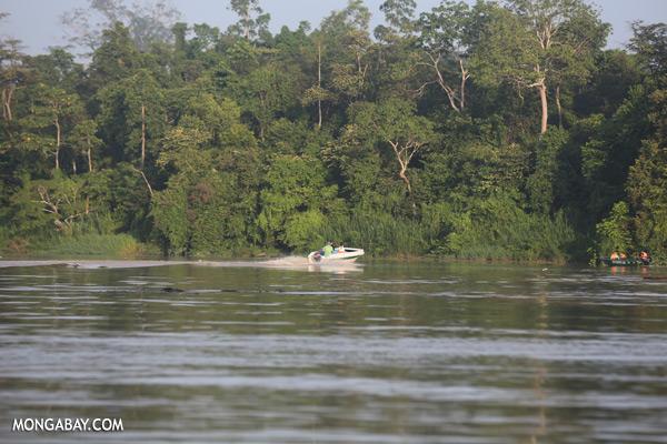 Ecotourists in the Kinabatangan river [sabah_kinabatangan_0247]