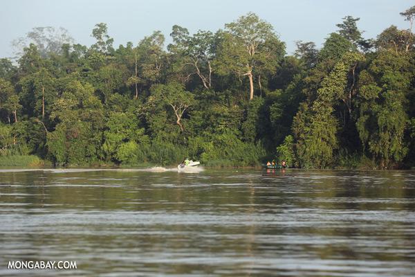 Ecotourists in the Kinabatangan river [sabah_kinabatangan_0248]