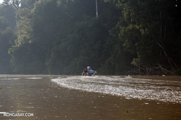 Ecotourists in the Kinabatangan river [sabah_kinabatangan_0316]