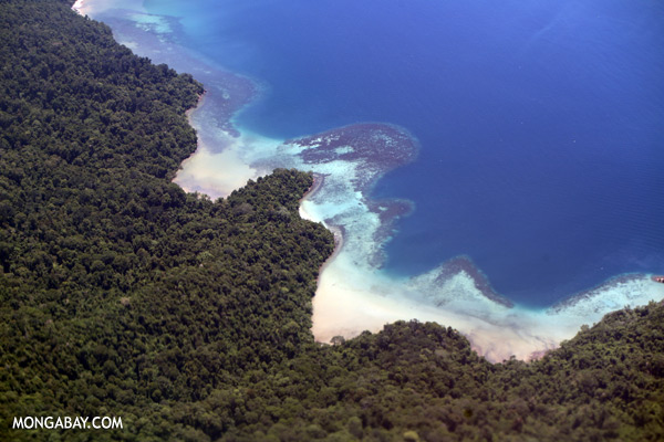 Airplane view of rainforest and coastal reefs in Borneo