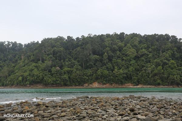 Channel between Sapi and Pulau Gaya [sabah_sapi_island_0044]