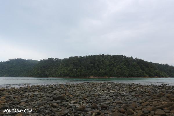 Channel between Sapi and Pulau Gaya [sabah_sapi_island_0045]