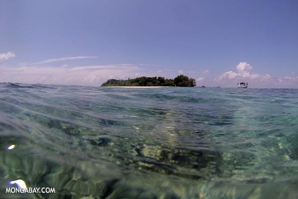 Sipadan island [sabah_underwater_0251]