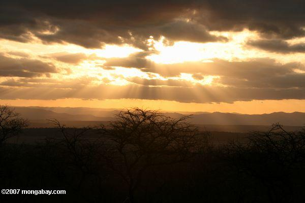 Sunset over Tarangire National Park