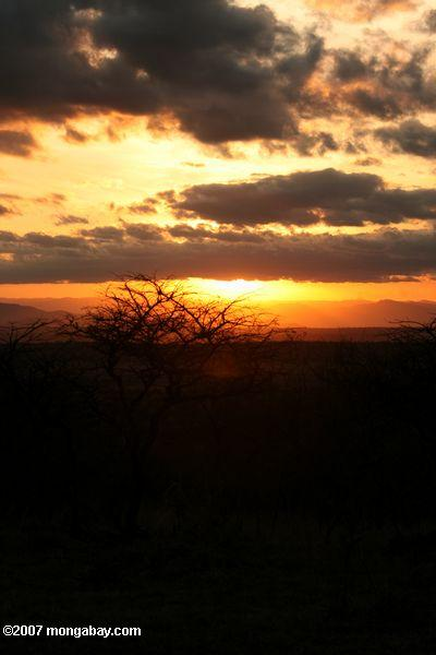 Sunset over Tarangire National Park -- tz_1837
