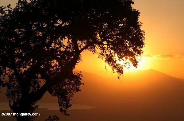 Sunset over the Ngorongoro Crater, Lake Magadi in the background