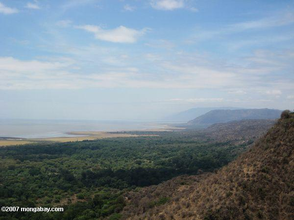 Rift Valley escarpment with the forest of Lake Manyara National Park below