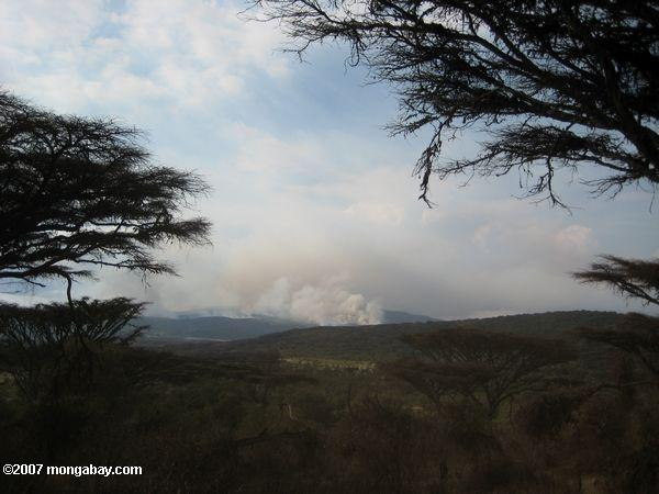 Brush fire in the Ngorongoro Conservation Area  -- tz_elf_0591