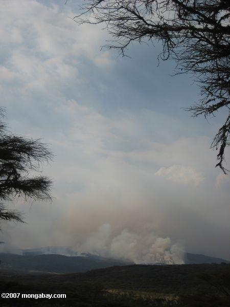 Brush fire in the Ngorongoro Conservation Area  -- tz_elf_0592