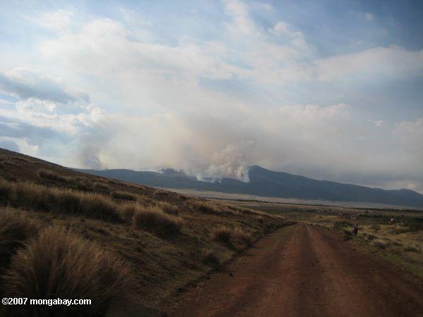 Brush fire in the Ngorongoro Conservation Area  -- tz_elf_0597