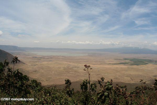 Panoramic view of Ngorogoro Crater with Lake Magadi