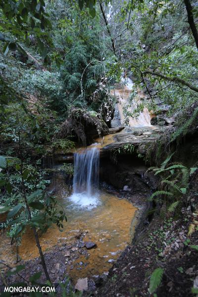 Waterfall on Waddell Creek [ca_big_basin_00281]