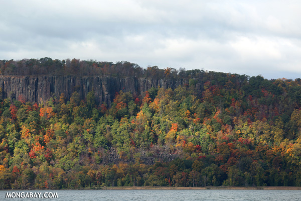 Cliffs along the Hudson River near Dobbs Ferry