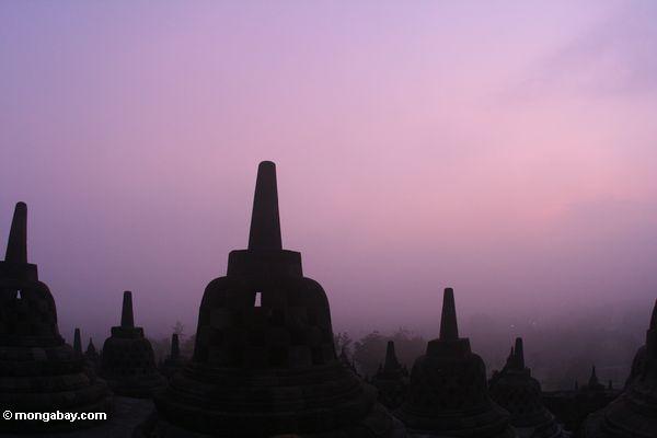 Stupas at sunrise (Java)