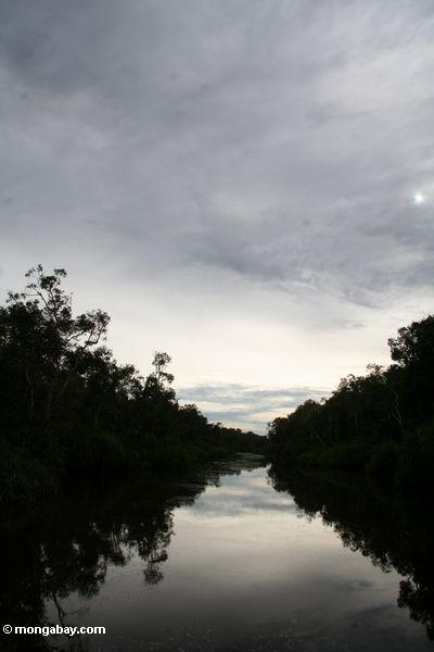 Sunset over the Sekonyer River (Kalimantan, Borneo - Indonesian Borneo)