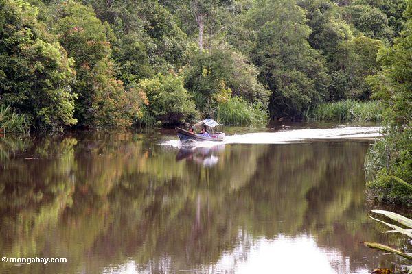 Speedboat on the Seikonyer River (Kalimantan, Borneo - Indonesian Borneo)