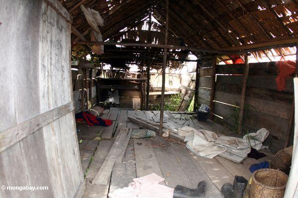 Inside of an abandoned homestead outside Tanjung Puting National Park (Kalimantan, Borneo - Indonesian Borneo)