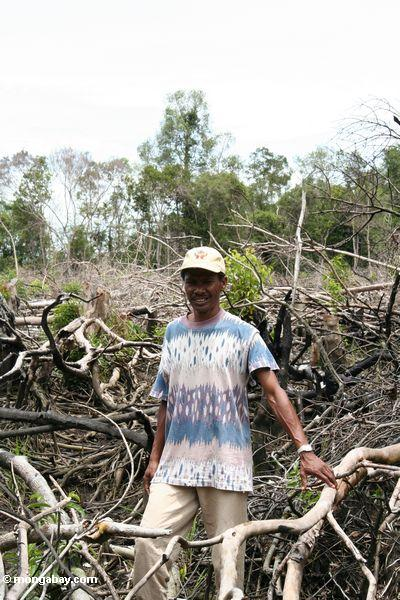 Nature guide Thomas standing among charred remnants of tropical forest in Borneo (Kalimantan, Borneo - Indonesian Borneo)