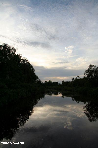 Seikonyer River sunset (Kalimantan, Borneo - Indonesian Borneo)