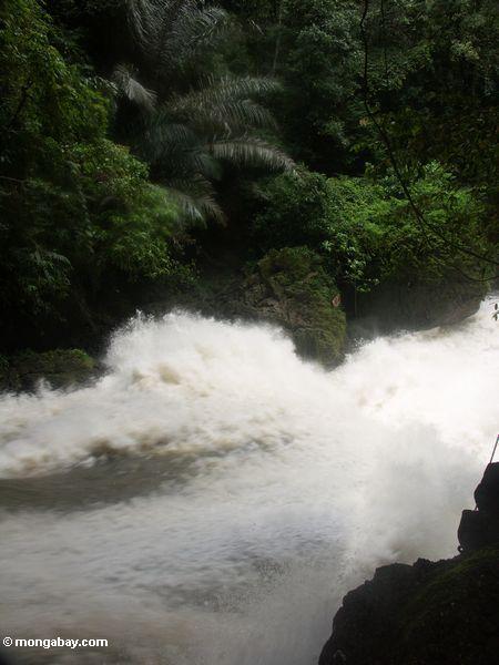 Bantimurung falls (Sulawesi - Celebes)