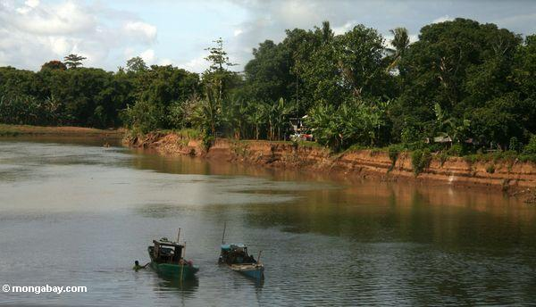Boats on a river in Sulawesi (Sulawesi - Celebes)