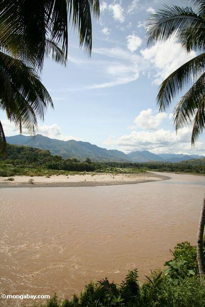 Muddy river in Sulawesi (Sulawesi - Celebes)