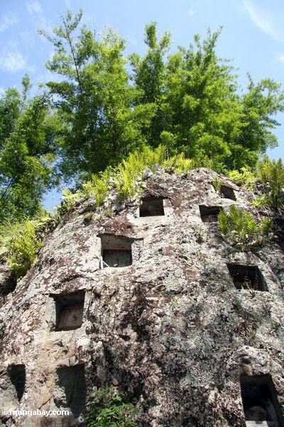 Tombs carved in a stone wall at Lemo (Toraja Land (Torajaland), Sulawesi)