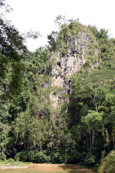 Tombs in cliffs at Londa Nanggala (Toraja Land (Torajaland), Sulawesi)