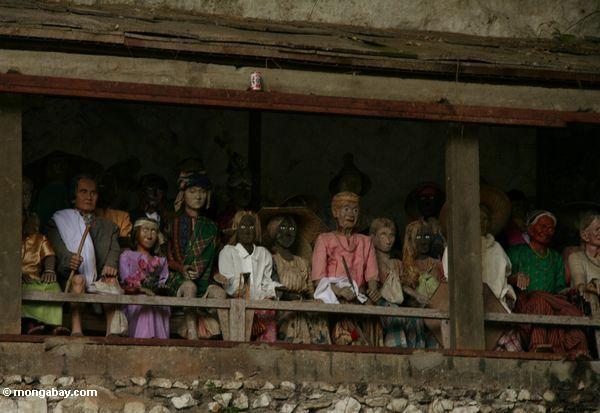 Tau-Tau Effigies at Londa Nanggala (Toraja Land (Torajaland), Sulawesi)