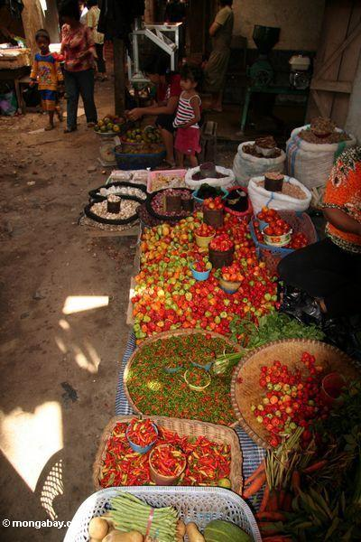 Vegetable and fruit market in Rantepao (Toraja Land (Torajaland), Sulawesi)