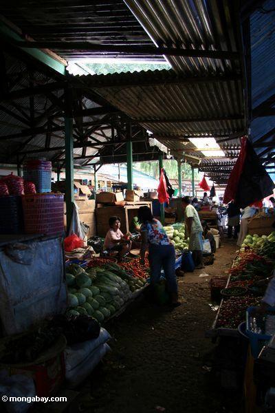 Melons at vegetable market in Rantepao (Toraja Land (Torajaland), Sulawesi)