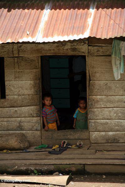 Kids peaking through a doorway (Toraja Land (Torajaland), Sulawesi)